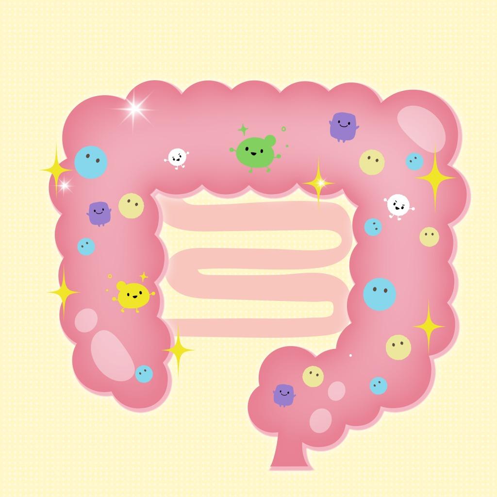 專門針對孩子排便問題研發的 順暢型益生菌 才能對症下藥,搭配酵素及膳食纖維更是效果加倍的關鍵