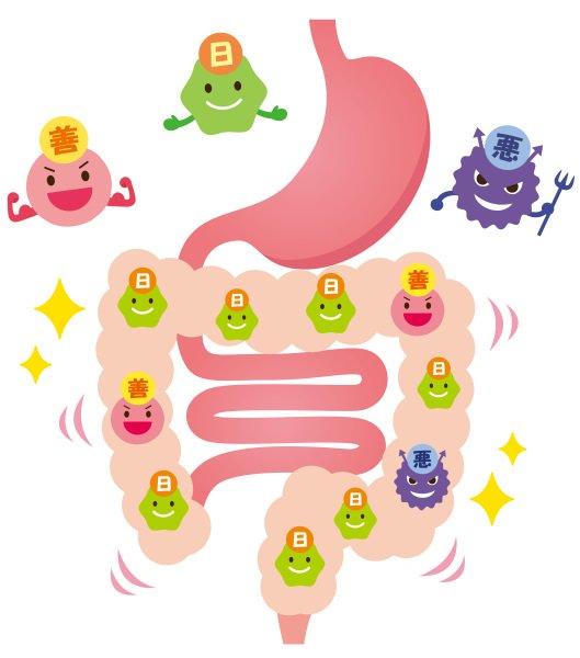 吃益生菌能降低寶寶脹氣機率嗎?